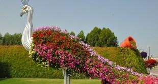 Types Of Gardening