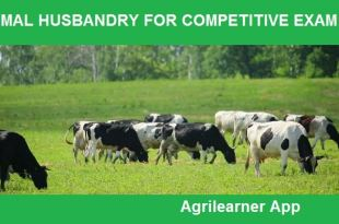 ANIMAL HUSBANDRY FOR COMPETITIVE EXAM