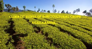 Climatic Zones Of Horticultural Crops