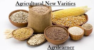 Agricultural New Varities