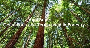 Definations and Terms used in Forestry