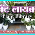 प्लँट लायब्ररी - Plant Library