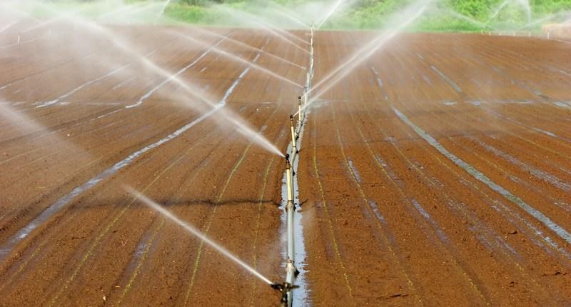 Crop Irrigation1