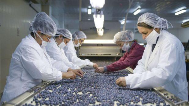 Ajustan por inflación a PyMEs agropecuarias