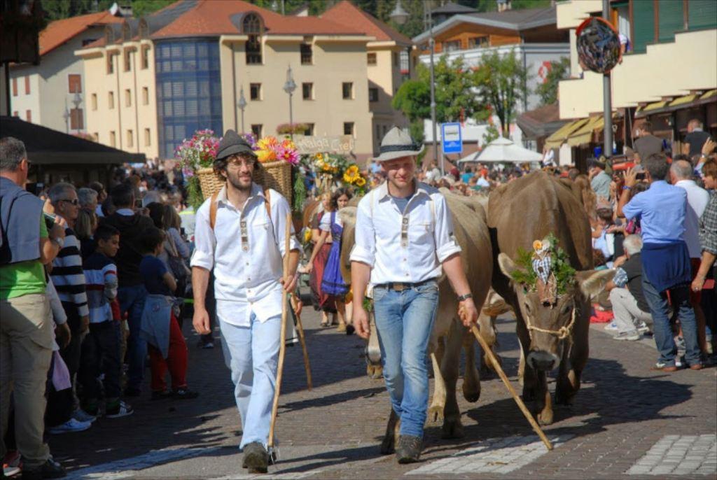 Gran-festa-del-Desmontegar-Desmontegada-Primiero-Dolomiti-del-Trentino-edizione-2015-11