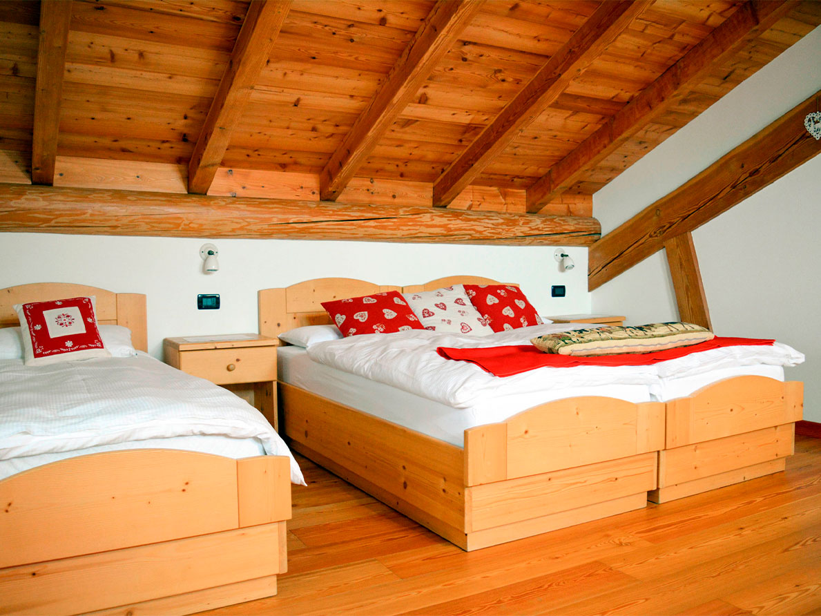 "The ""Cervo"" Room from the Agritur Dalaip dei Pape"