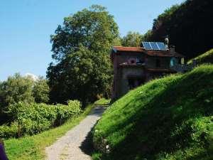 L'Agriturismo - Panoramica Estiva Terzo Casale