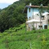 L'Agriturismo - Vista Retro Secondo Casale