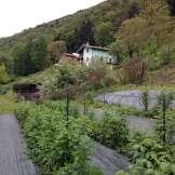 Vista Al-Marnich - Panoramica dal Giardino