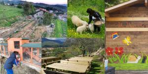 fattoria-didattica-del-Macereto-agriturismo-a-fivizzano