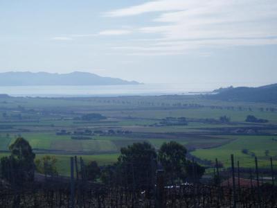Veduta del Mare e Monte Argentario