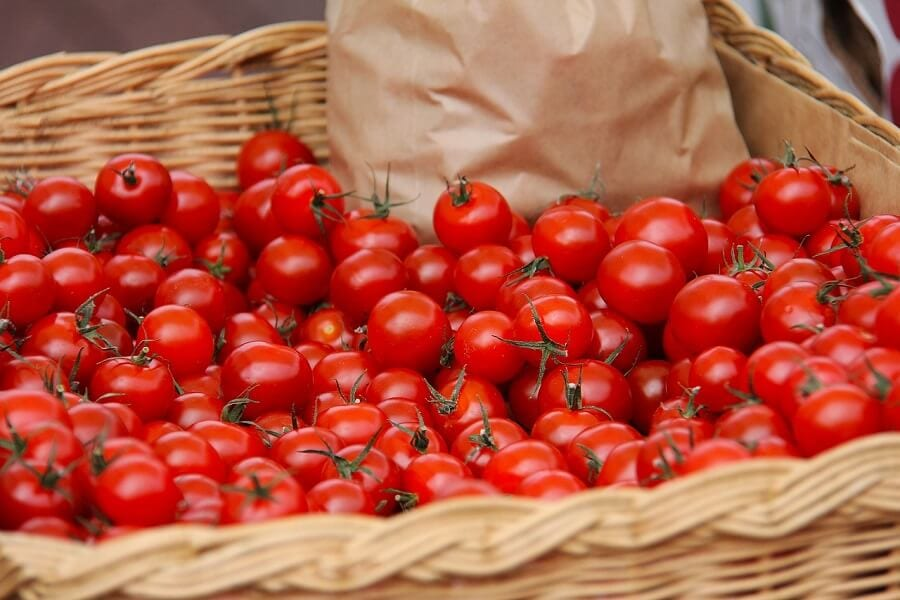 Picture of Fresh tomatoes in a basket: Reasons many agribusinesses fail