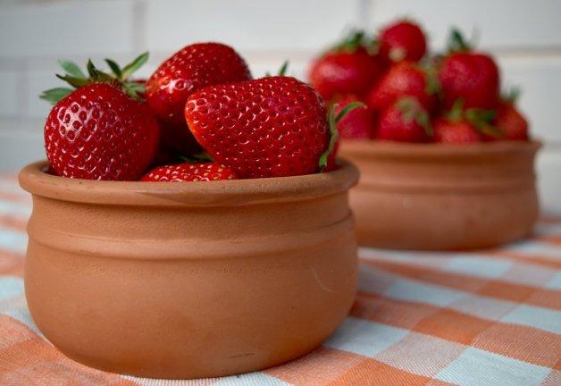 Sveži plodovi jagode
