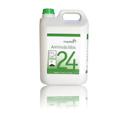 Aminoácidos 24