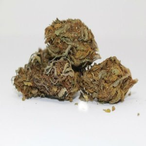 Agrodine Hemp Bud Flower 8grams
