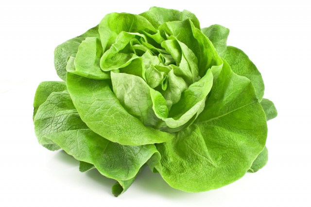 Risultati immagini per insalate tipi