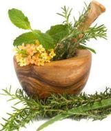 Plantas para curar enfermedades: 8 remedios naturales con plantas