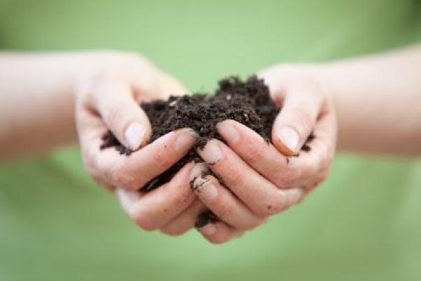 abono orgánico y fertilizantes ecológicos