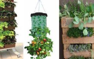 Recipientes de Cultivo para el huerto urbano: Características y tipos