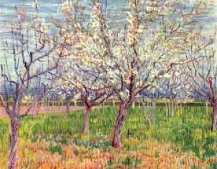 Huerto blanco Van Gogh