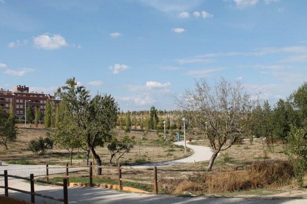 Parque y arroyo en San Sebastián de los Reyes, en zona de los huertos