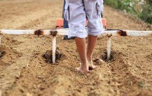 Aperos Manuales para Cultivar la Huerta