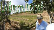 Una huerta tradicional: visitando LA HUERTA DE JOSÉ
