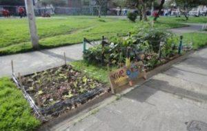 Huertos urbanos en Bogotá - #QueremosConocerTuHuerto