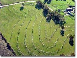 La Agricultura Regenerativa: Principios y prácticas
