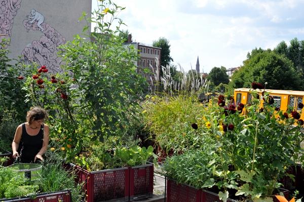 Bancales de cultivo reciclados en Prinzessinnengarten (Fuente: www.prinzessinnengarten.net)