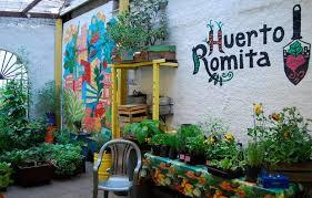 Huerto urbano Romita en México DF