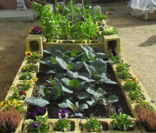 cómo cultivar una mini huerta en el jardín