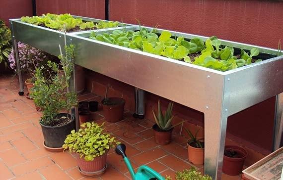 huerta casera en poco espacio usando mesas de cultivo