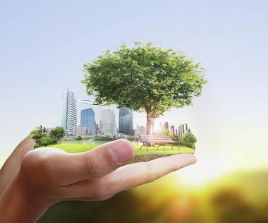 Naturación Urbana para unas ciudades verdes