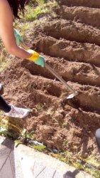 Cómo preparar el Terreno y hacer Surcos: Guía completa