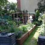 Cultivar un huerto ecológico: 5 cosas que debes saber