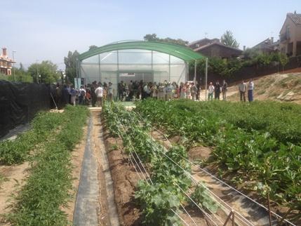 El Huerto ecológico de la Fundación Trébol