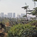 Naturación urbana en China: Mucho más que Huertos