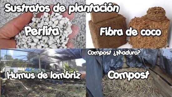 Aquí vemos varios tipos de sustratos de plantación
