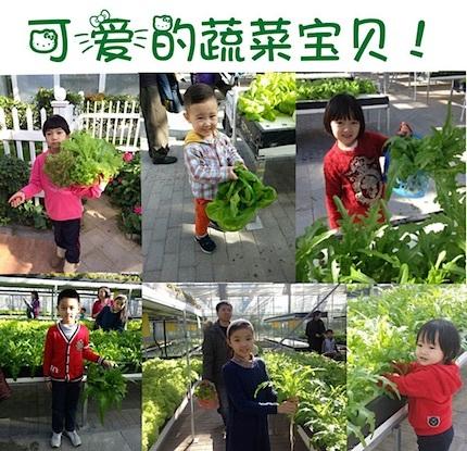 Naturación Urbana en China