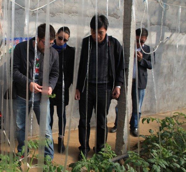 Entutorado en Tianze farm