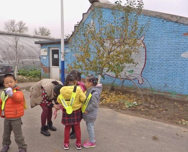 Agricultura periurbana (Central Cultural Leisure Park)