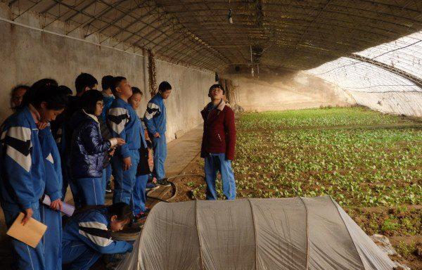 Invernadero didáctico en Shangzhuang Middle School (Pekín)