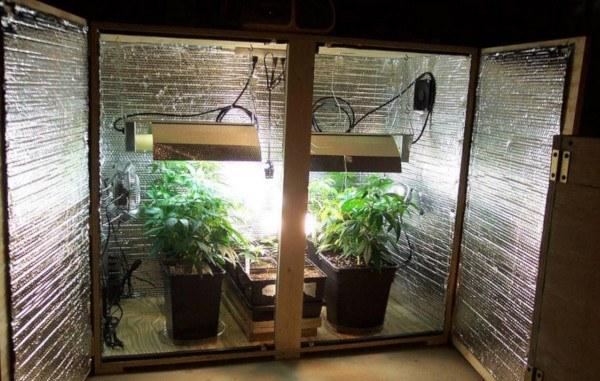 Armario de cultivo de interior