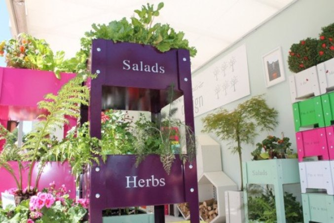 recipientes en Chelsea Flower Show