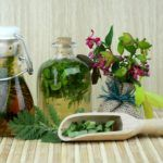 Insecticidas Naturales. 10 plaguicidas para el huerto ecológico