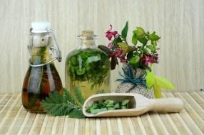 10 Insecticidas Naturales para plantas:  Insecticida casero ¿Cómo deshacerse de las plagas?