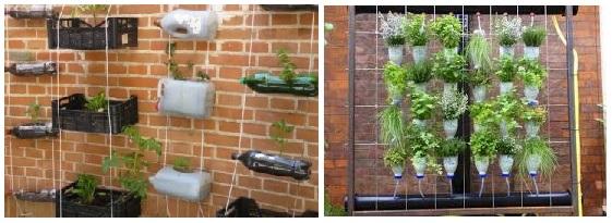 mini huerto vertical con recipientes reciclados