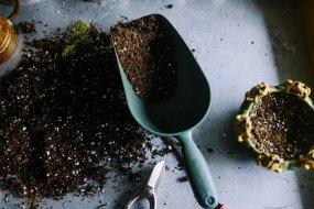 Cómo preparar Sustrato Para la Huerta. Características del Sustrato Ecológico