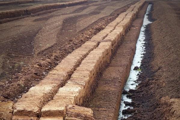 turba y otros tipos de humus útiles para abonar el suelo